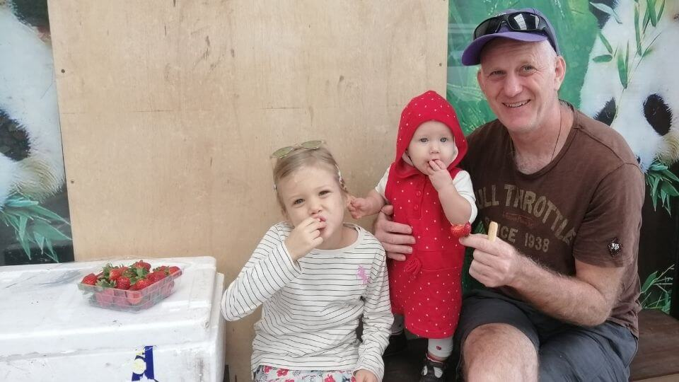 Ayla, Romy and Colin eating strawberries at Raju's strawberry farm