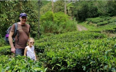 Our Top Picks For Interesting Things to do in the Cameron Highlands