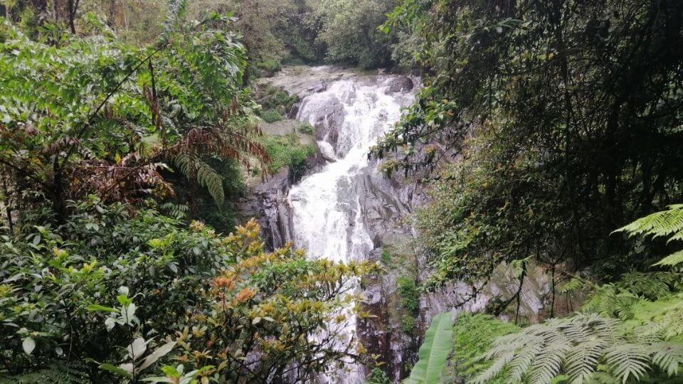 Things to do in the Cameron Highlands-Hiking Trails-Robinson's Falls