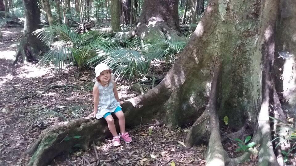 Things to do in Gisborne-Gray's Bush Scenic Reserve-Ayla sitting on giant tree root