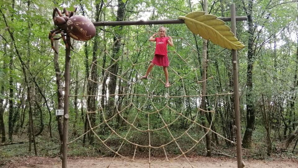 Things to do in Poitou Charentes-Defi Planet-Ayla climbing spider web in the forest trail